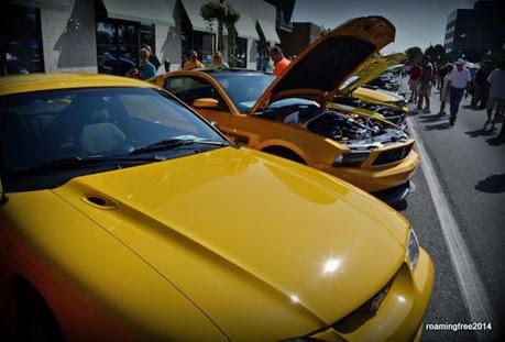 Yellow Mustangs