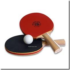 Ping-Pong-Paddle-4255