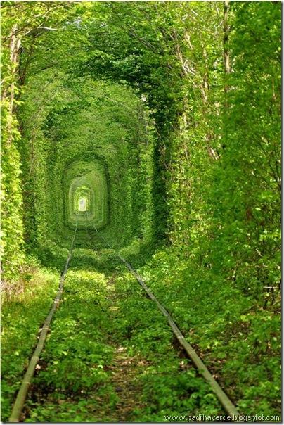 caminhos (2)