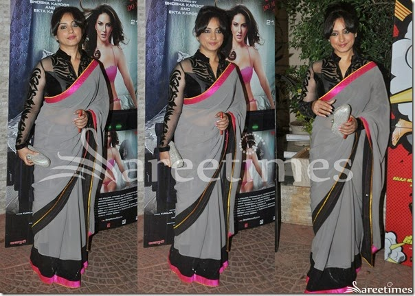 Tisca_Chopra_Grey_Saree