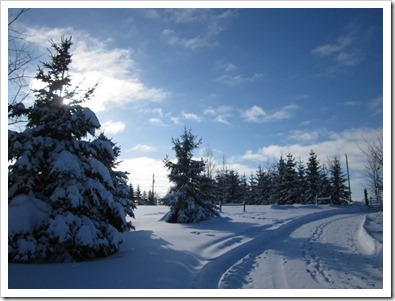 20121230_snow_009