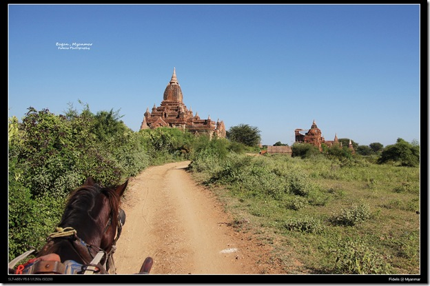 Myanmar100