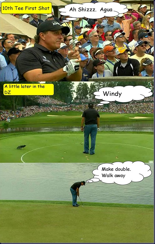 mickelson disaster
