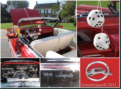 64 impala collage