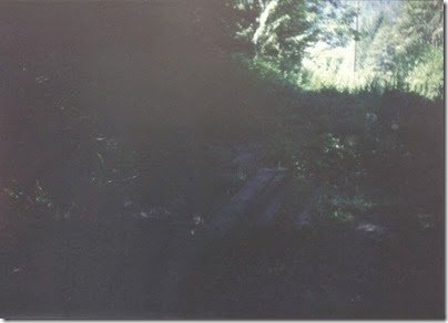 Abandoned Tracks leading from Pioneer Tunnel in 1994