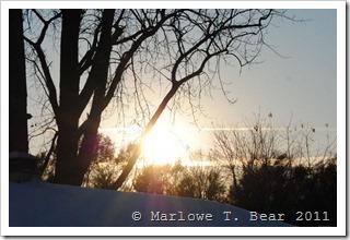 tn_2011-11-11 Winter (7)