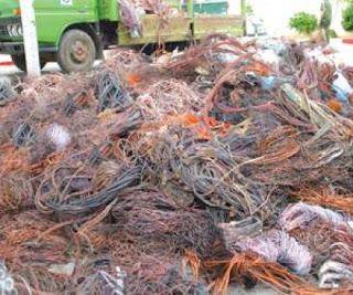 TLEMCEN : Saisie de 650 kg de dattes, de psychotropes et de déchets de cuivre