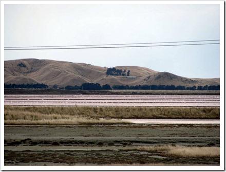 Grassmere Salt lakes or evaporation ponds.