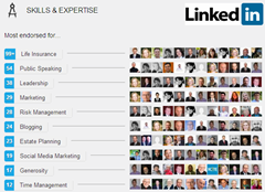 LinkedIn Skills and Expertise (2013-02-18)