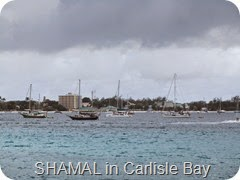 021 SHAMAL in Carlisle Bay