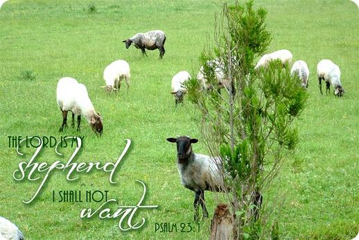 The Lord is my Shepherd jpg