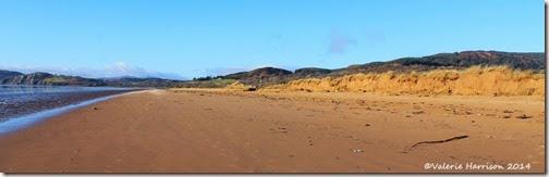 22-damaged-dunes