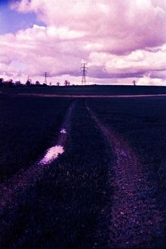 Summer-Fields-6---XPRO