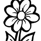 Flor%2520-%252011.jpg