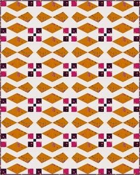 Block 7 Quilt