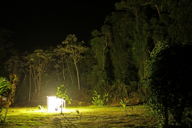Collecte nocturne. Gîte Moutouchi. Photo : Moutouchi-Guyane