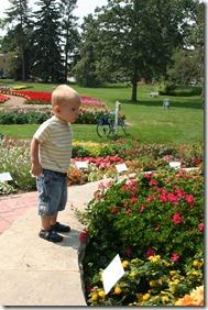 2013-08-16 Flower Gardens (41)