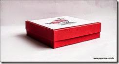 Kutija za razne namjene - Geschenkverpackung a (5)