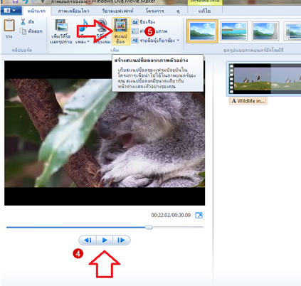 software windows live movie maker snapshot step 2