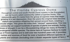 Florida Marriott Cypress Harbour cypress tree sign