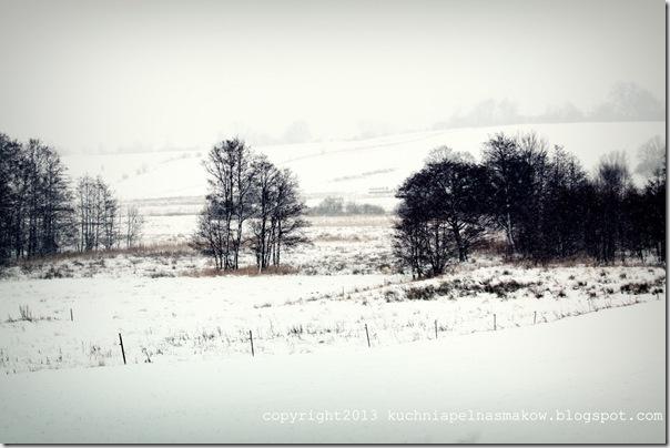 pola w zimowej szacie