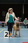 20130510-Bullmastiff-Worldcup-0306.jpg