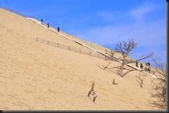 Arcachon-Duna de Pila , 31 de Marzo de 2013   -   105