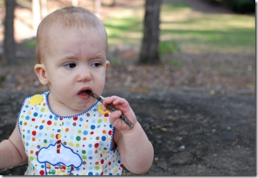 eating a stick