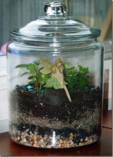 Terrarium - Take 2 - 4