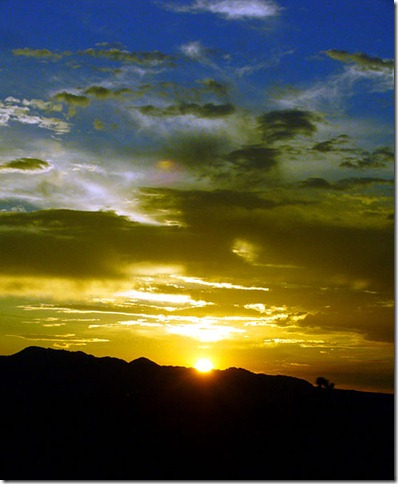 492px-Mustard_Blue_Sunset