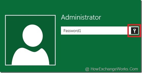 Reveal Password In Windows 8