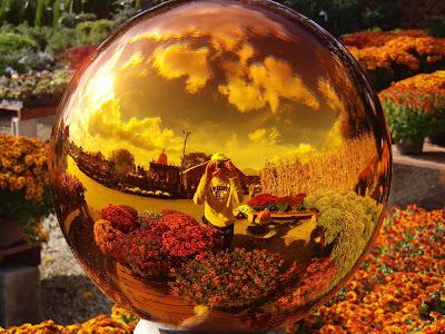 球に写った景色