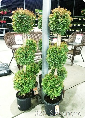 topiaries at walmart