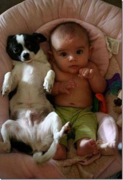 dogs-kids-best-friend-26