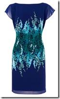 Coast Print Dress