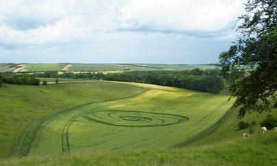 Cercuri in lanuri 7