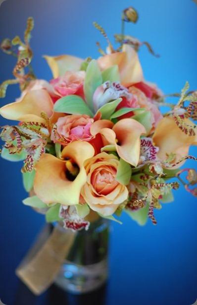 19037_247141785956_1119473_n flora bella