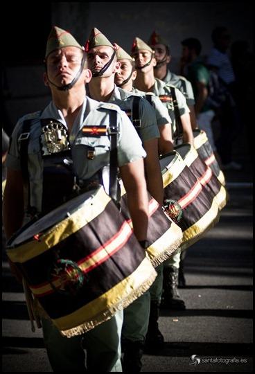 fuerzasArmadas11-25