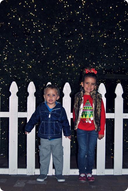 Plano Christmas Tree Lighting 2012 042