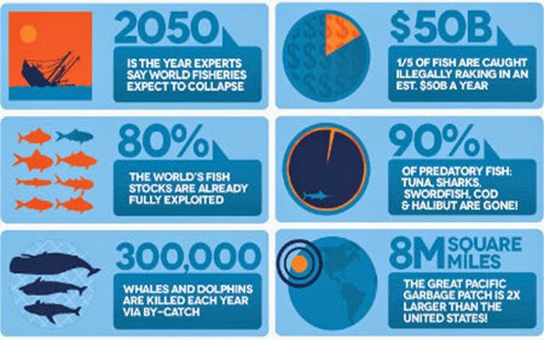 full_1343788023terramarproject_ocean-threats_infographic
