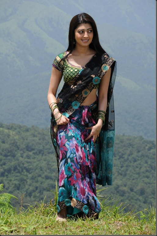 pranitha_in_saree_cute_photo