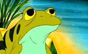 10 grenouilles