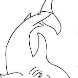 tiburon_2.jpg