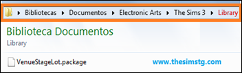 Meus Documentos\Electronic Arts\The Sims 3\Library