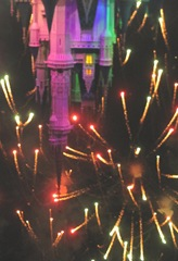 Disney trip fireworks near castle 3