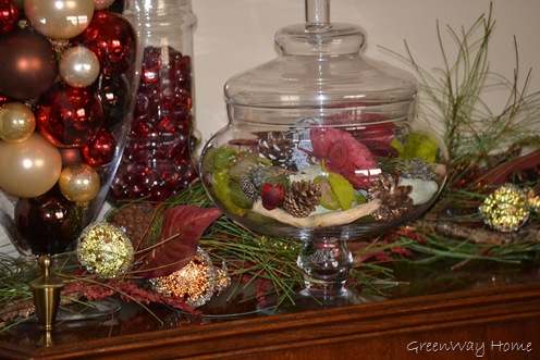 Holiday Vignettes 008