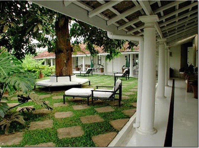 Thesunhouse_com_Mango_Tree_Garden