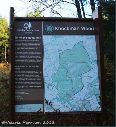 2-Knockman-Wood-sign