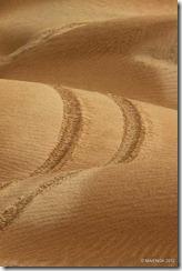 Rally Marokko 2012 E4-5 11