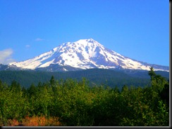 mt.shasta.mc3